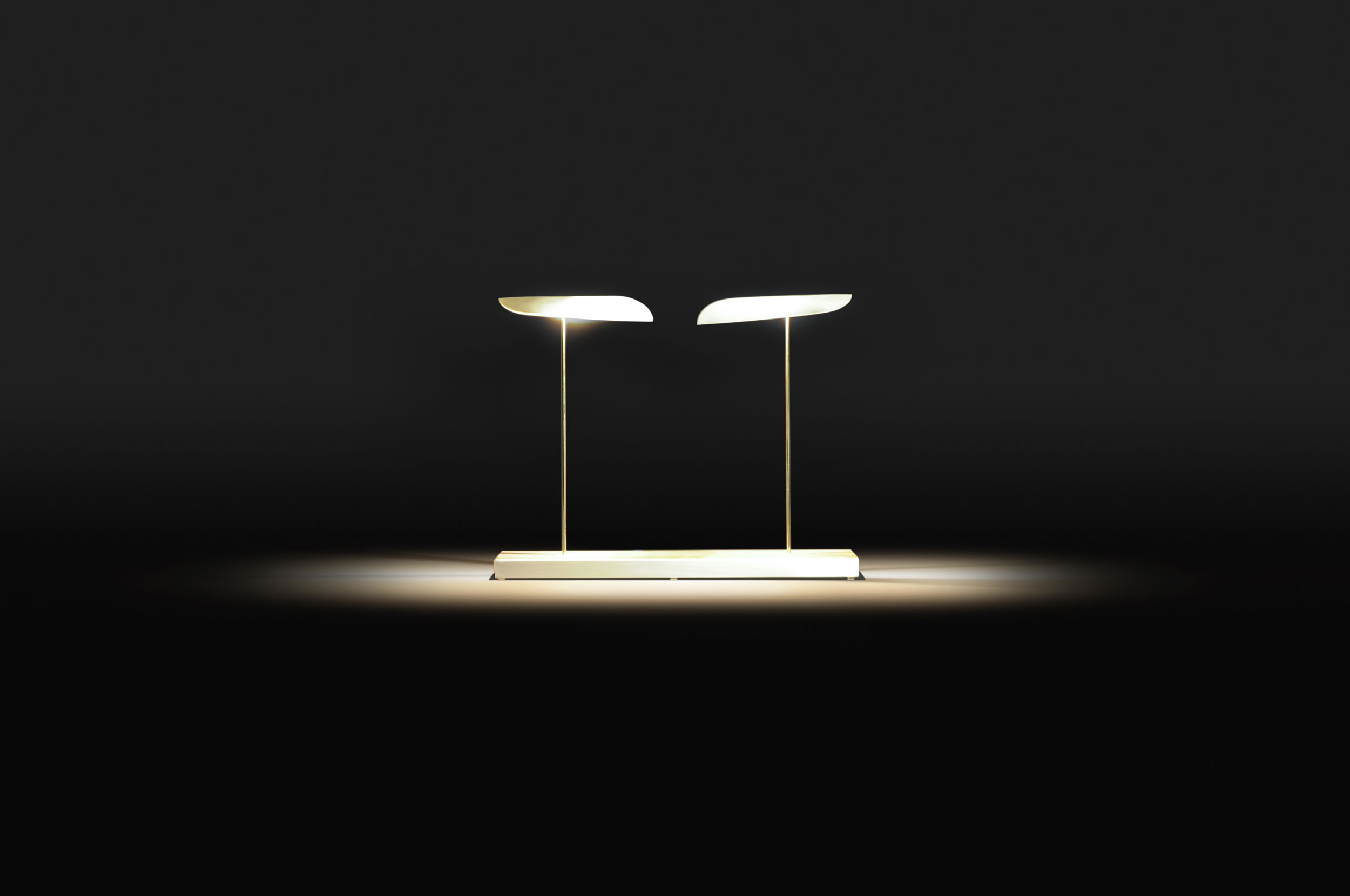 Simple double desk light by Paolo Castelli